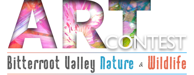 Art Contest - Bitterroot Valley Nature & Wildlife